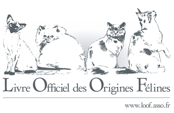 logo_loof_2007_page_web
